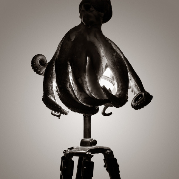 Lamptopuse